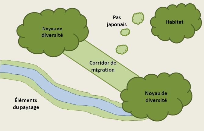 Design de connectivité écologique (adapté de NAQ, cité dans Fondation David Suzuki et NAQ 2012)
