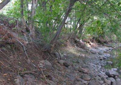 Érosion dans le ruisseau Massé